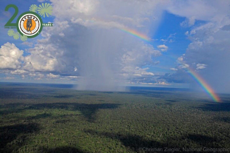 Rainbow20y-768x512.jpg