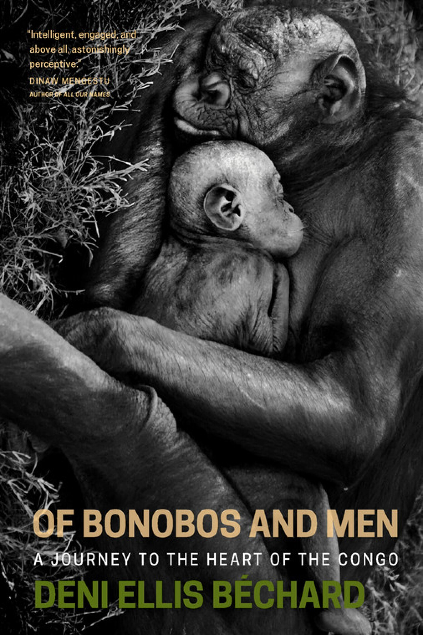 Of_Bonobos_and_Men_300dpi_RGB_0.jpg